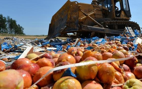 57 тонн фруктов уничтожили в Смоленской области