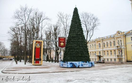 В Смоленске установили новогоднюю ёлку