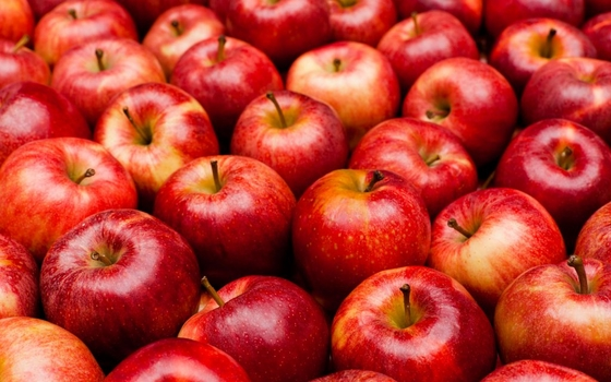 В Смоленскую область не пустили 18 тонн яблок
