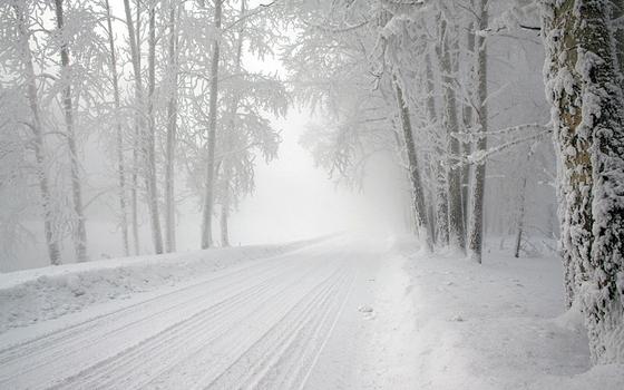 Туман и гололед ожидают смолян в понедельник