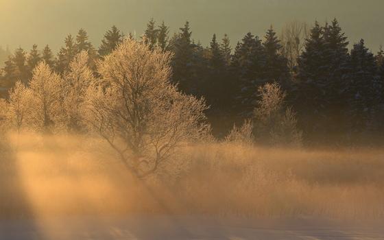 Туман и гололед ожидают смолян во вторник