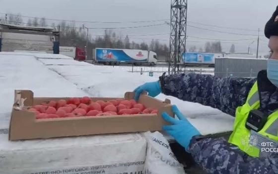 В Смоленскую область не пропустили 8 тонн томатов