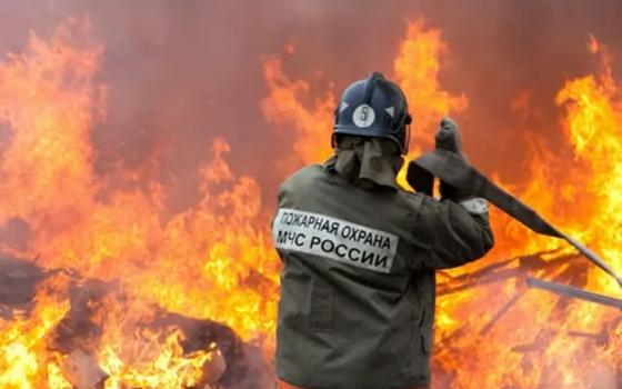 21 человек умер в результате пожаров в Смоленской области