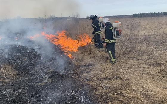 123 раза пожарные выезжали на тушение травы на Смоленщине