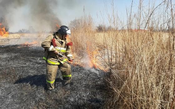 Смоленские пожарные более 800 раз выезжали на тушение сухой травы
